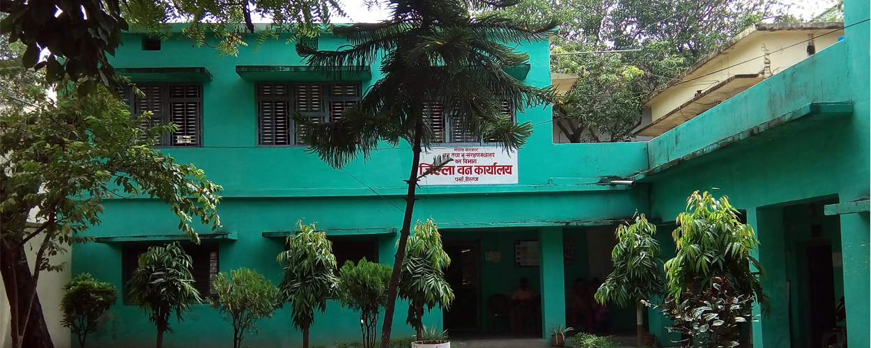 District Forest Office, Parsa